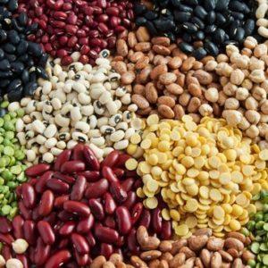 Légumes secs & Graines Vrac